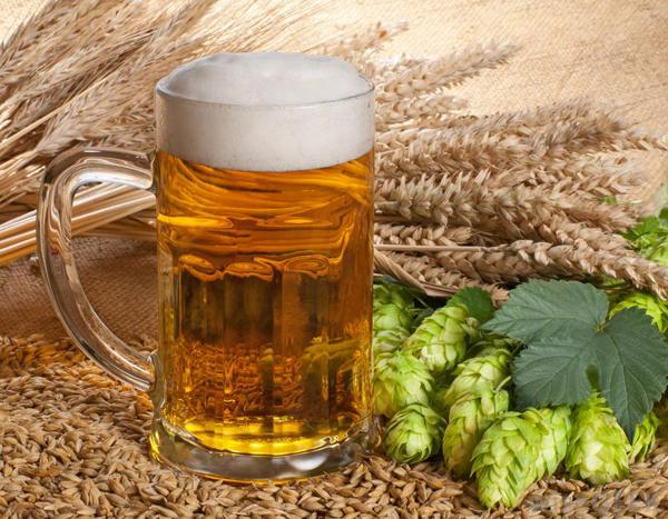 Bia có thành phần chính là lúa mạch