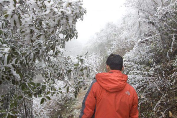 Thời tiết Sapa dịp Tết Nguyên Đán 2019