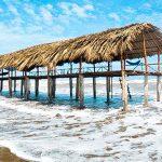 Tham quan khu du lịch biển Thạnh Phú Bến Tre có gì hấp dẫn