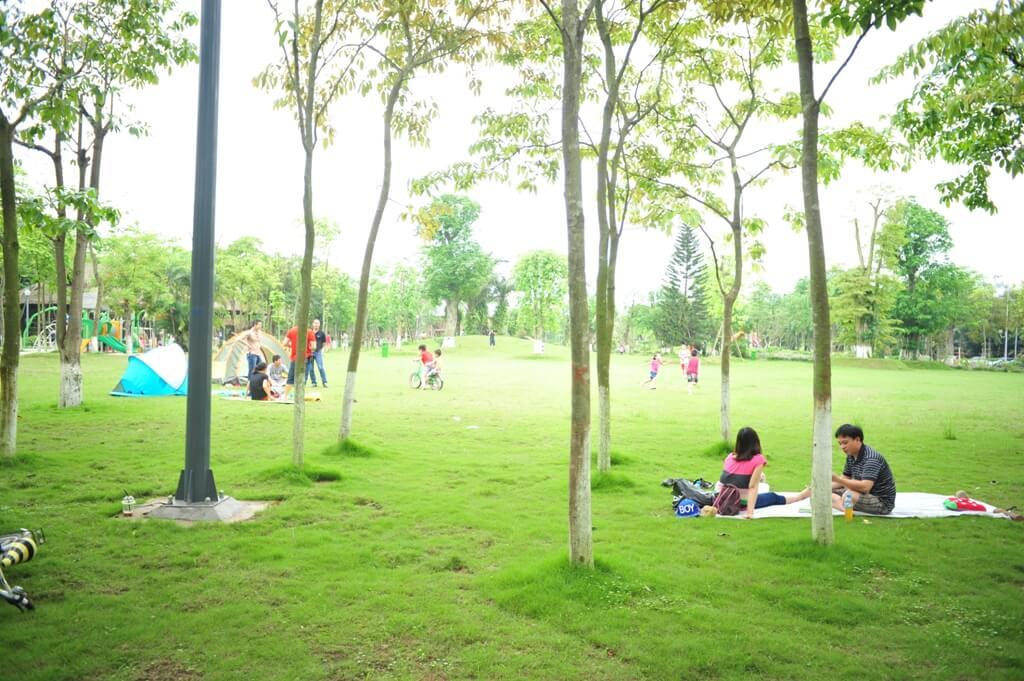 Không gian công viên trong lành